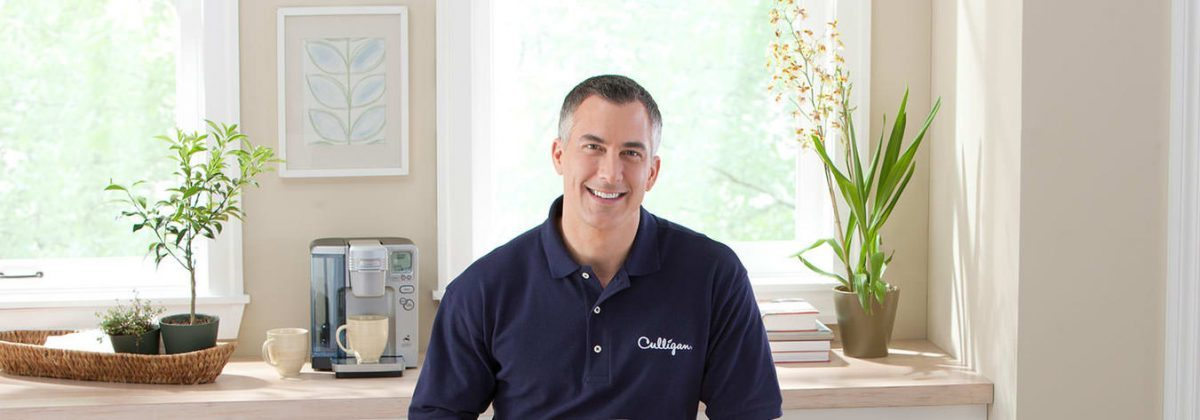 culligan water expert in the kitchen
