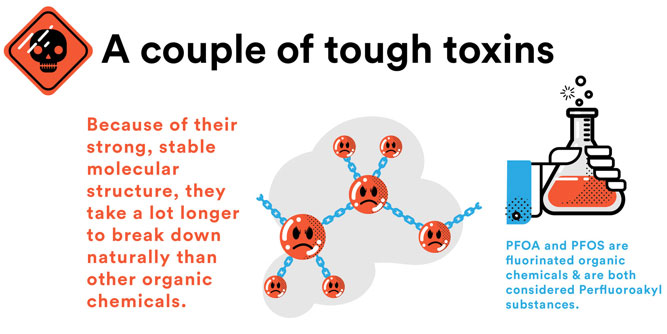 PFOA and PFOS are tough toxins