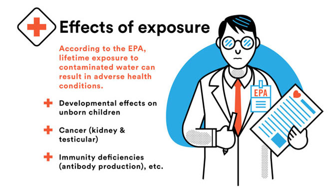 Effects of PFOA & PFOS exposure