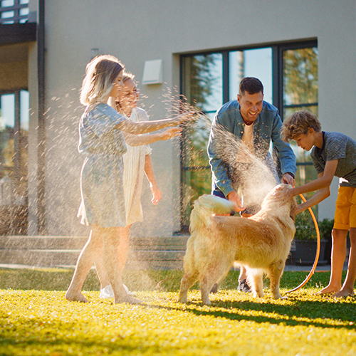 family with dog playing with water hose